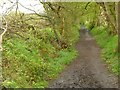 SJ9070 : Footpath to Danes Moss Nature Reserve by Alan Murray-Rust