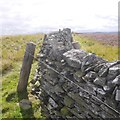 NT3626 : Electric fencing on Rough Knowe by Richard Webb
