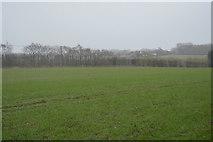 TR2257 : Field by N Chadwick