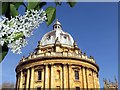 SP5106 : The Radcliffe Camera in Oxford : Week 18