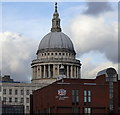 TQ3281 : St Paul's Cathedral from the river by Rudi Winter