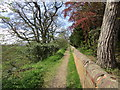 NZ1014 : Footpath above Whorlton Banks by Jonathan Thacker