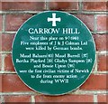 TG2307 : Commemorative plaque by the old Carrow Hill School by Evelyn Simak
