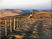 NT1513 : Fence and ATV track on Carrifran Gans by wrobison