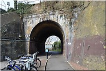 TQ1968 : London Loop at Berrylands by N Chadwick