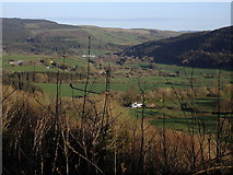 SN6672 : Ystwyth valley upstream of Trawsgoed by Rudi Winter