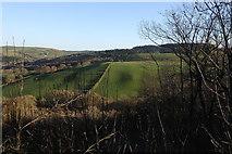 SN6672 : Fields on Gaer Fawr by Rudi Winter