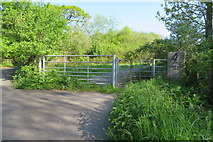 SX9066 : Nightingale Park  access gate by John C