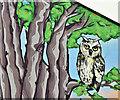 J3373 : Owl and tree wall art, Belfast (May 2018) by Albert Bridge
