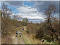 NH8621 : Walking the Slochd Military Road : Week 19