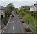 SM9515 : Tree-lined Cartlett Road, Haverfordwest by Jaggery
