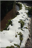 SX8963 : Snowy wall and stream, Cockington by Derek Harper