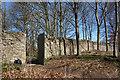 SP4318 : Side door into Blenheim Park by Des Blenkinsopp