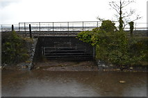 SX9780 : Very low bridge to the Exe by N Chadwick