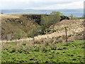 NR6690 : Ravine at Lealt by M J Richardson