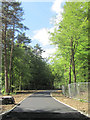SP8808 : The far end of the new stretch of road in Wendover Woods by Chris Reynolds