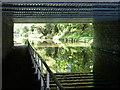 SJ8120 : Under the Gnosall Railway Bridge 35A by Mat Fascione