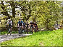 SD9772 : Tour de Yorkshire - spectator cyclists  by Stephen Craven