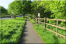 SX9265 : St. Marychurch Road approaching Millennium Green by John C