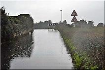 SX9780 : A downpour, Dawlish Warren Rd by N Chadwick