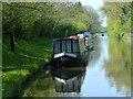 SJ7427 : Narrowboats moored along the Shropshire Union Canal by Mat Fascione