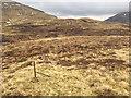 NN6041 : Fenceline towards the shoulder of Meall Corranaich by John Allan