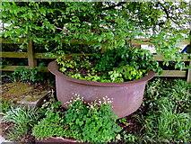 H5064 : Cast iron pot, Gortaclare by Kenneth  Allen