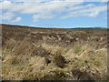 NR4172 : Heather moorland above Bunnahabhain by M J Richardson