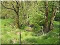 SJ9678 : Footpath crossing Black Brook by Antony Dixon