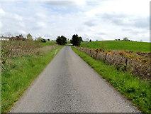 H5375 : Fernagh Road by Kenneth  Allen