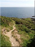 SX5645 : Path descending to Stoke Point by Martin Bodman
