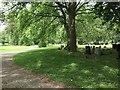 SJ8645 : Stoke (Hartshill) Cemetery (8) by Jonathan Hutchins