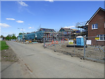 NS4865 : New houses on Mosslands Road by Thomas Nugent