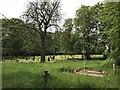 SJ8645 : Stoke (Hartshill) Cemetery (13) by Jonathan Hutchins