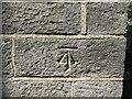 NZ2253 : Ordnance Survey Cut Mark by Peter Wood
