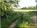 TF1506 : Footpath off North Fen Road, Glinton by Paul Bryan