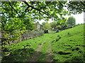 NY7701 : Footpath north of Shoregill by John Slater