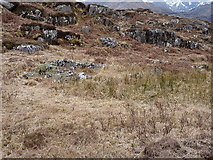 NG8705 : Croft ruins beside the track by Richard Law