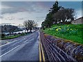 NH6644 : Castle Road Inverness by valenta