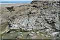 SW6949 : Veined Rock by Anne Burgess