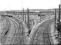 TG2407 : View across Thorpe Junction by Evelyn Simak