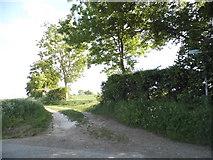 TL2933 : Path off The Street, Wallington by David Howard