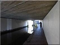 SO8554 : Under the bridge by Jeff Gogarty