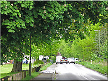 TQ1365 : Lower Green Road (2) by Mike Quinn