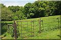 SX4866 : Path near Buckland Abbey by Derek Harper