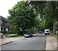 SJ8544 : Buckmaster Avenue, Clayton by Jonathan Hutchins