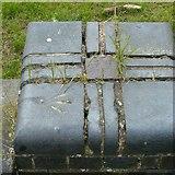 SK6515 : Rivet bench mark, Rearsby Road bridge, Thrussington by Alan Murray-Rust