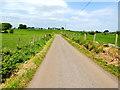 H2984 : Scarvagherin Road, Drumnabey by Kenneth  Allen