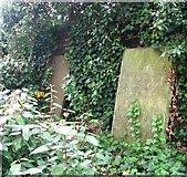TG2309 : The Secret Garden - old gravestones by Evelyn Simak
