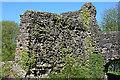 NY0881 : Lochmaben Castle by Anne Burgess